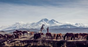 Photo by Mahir Uysal on Unsplash